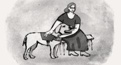 Подготовка собак-поводырей для незрячих
