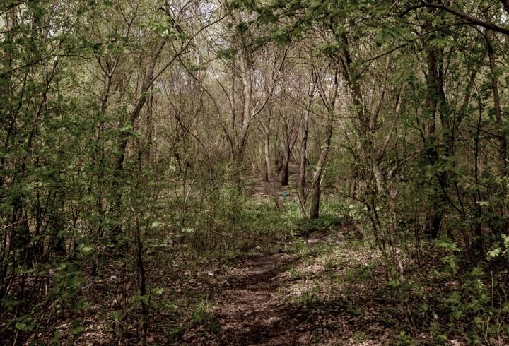 Две сестры ушли трахаться в лес