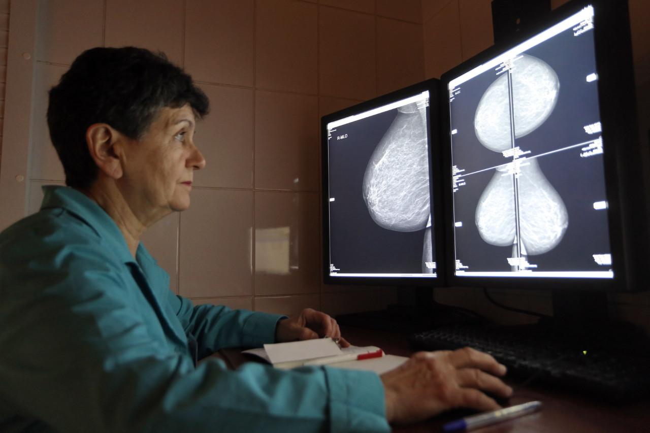 Бесплатно фото на весь екран дам раком фото 65-770
