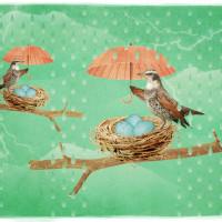 Bird_Vifleem_Vyatka