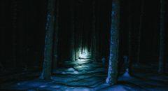 IKV_11122016_Sunskij_bor Сунский бор ночью